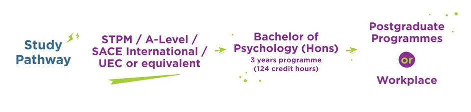 Study Pathway for Psychology Degree at DISTED College