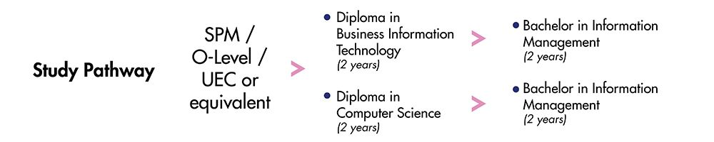 Taiwan Transfer Programme for Business Information Technology Course at DISTED College